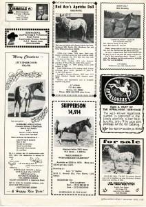 """Appaloosa News"" December 1975"
