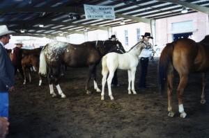 State Fair '98